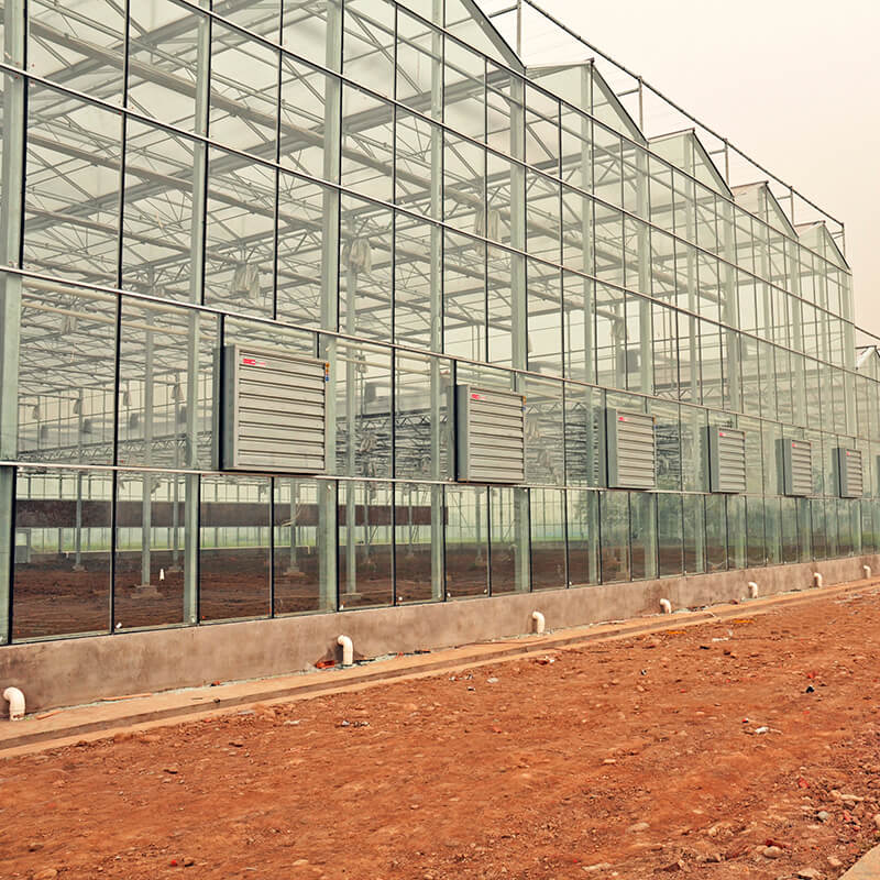 Classification of greenhouses (4)
